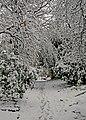 Snow in Queensbury 4th December 2020 - 50679604948.jpg