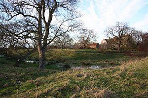 Somerton Castle - Image: Somerton Castle Geograph 1055605 by Richard Croft