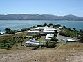 Somes Island DOC Buildings.jpg