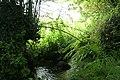 South Petherwin, stream near Trecongdon - geograph.org.uk - 511660.jpg