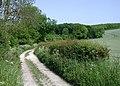 South Side Lane, Rudston - geograph.org.uk - 464177.jpg