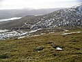 South Westerly slopes of Meall Greigh - geograph.org.uk - 356124.jpg
