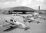 Souther Field - PT-17 Stearmans on Flight Line.jpg
