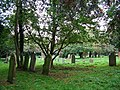 St Nicholas Church Cemetery. Bradwell - geograph.org.uk - 273189.jpg