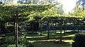 Stadtfriedhof Celle Laubengarten 7955.jpg
