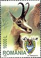 Stamps of Romania, 2004-034.jpg