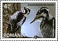 Stamps of Romania, 2013-87.jpg