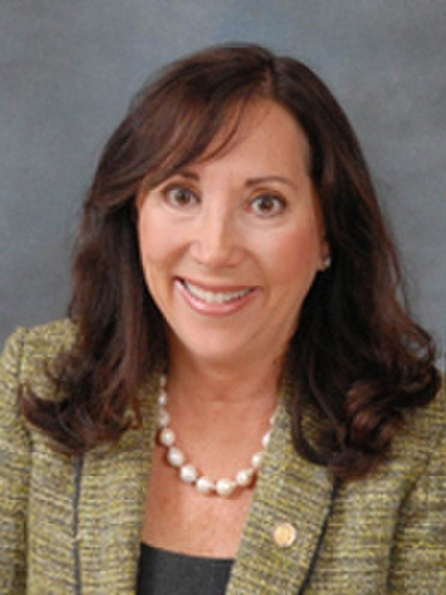 From commons.wikimedia.org: State Representative Lori Berman {MID-278332}