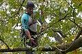 Stephane Climbing.jpg