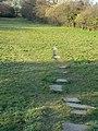 Stepping stones - geograph.org.uk - 1231606.jpg
