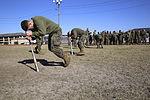 Stingers battle it out 140228-M-NT332-932.jpg