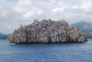 Stone islet in Coron, Palawan.JPG