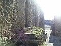 Strada alla terrazza di Castel Ruggero.jpg