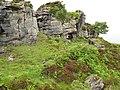 Suishnish Sandstone Formation - geograph.org.uk - 901129.jpg