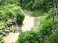 Sungai Cisande di Luragung, Kuningan - panoramio.jpg