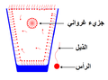 Surfactants in glass with micelle.PNG