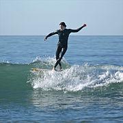 Dog Surfing Big Waves
