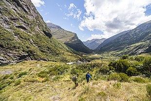Râurile din Noua Zeelandă în engleză. Geografia Noii Zeelande: natură, relief, climă, populație