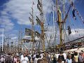 Tall Ships Races Stockholm 1.jpg