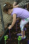 Team Seymour plants Pinwheels for Child Abuse Prevention 160401-F-FU646-203.jpg