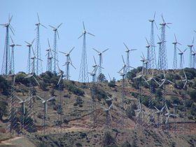 Tehachapi wind farm 3.jpg