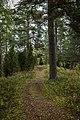 Tenholan linnavuori, Hattula, Finland (48935073372).jpg