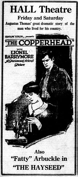 The Copperhead - Newspaper advertisement