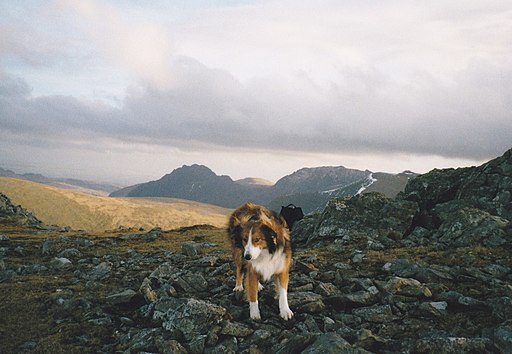 The Bwlch Melynwyn Gap on the summit ridge of Elidir Fawr - geograph.org.uk - 1730990