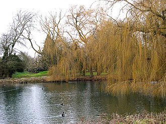 Bourne, Lincolnshire - St. Peters' Pool, Wellhead Gardens. The pool referred to in the town's founding legend