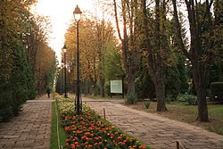 The Iași Botanical Garden, main entrance (east).JPG