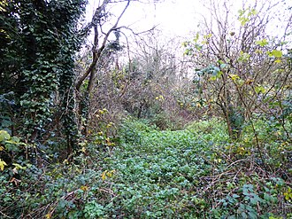 The Orchards Nature Reserve - Image: The Orchards Nature Reserve 2