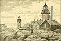 The Pine-tree coast (1891) (14777044584).jpg