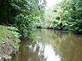 The River Blackwater - geograph.org.uk - 528950.jpg