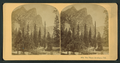 The Three Brothers, Cal, by Littleton View Co..png