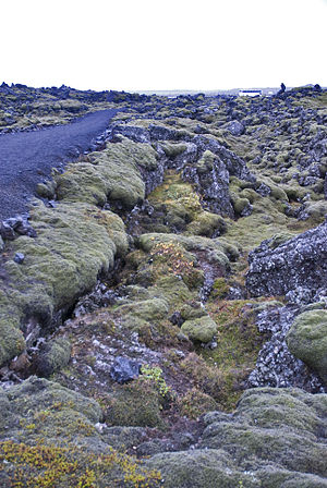 Volcanology of Iceland - A lava field in Iceland