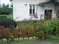 The flower bed near the house. September 2013. - Клумба перед домом. Сентябрь 2013. - panoramio.jpg