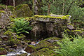 The old stone bridge (7529615998).jpg