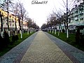 The pedestrian alley on the Avenue of Victory ... Пешаходная алея па праспекце Перамогі - panoramio.jpg
