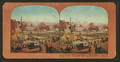 The utter desolation of San Francisco from the water front, Fairmount Hotel and Nob Hill in the distance, from Robert N. Dennis collection of stereoscopic views.png