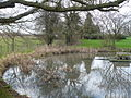 The village pond, Coldred - geograph.org.uk - 643670.jpg