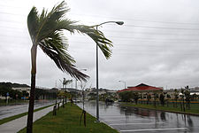 The wind whips through palm trees as Typhoon Chaba blows ashore at U.S. Marine Corps Base Smedley D. Butler, Okinawa, Japan, Oct. 28, 2010 101028-M-VG363-103.jpg