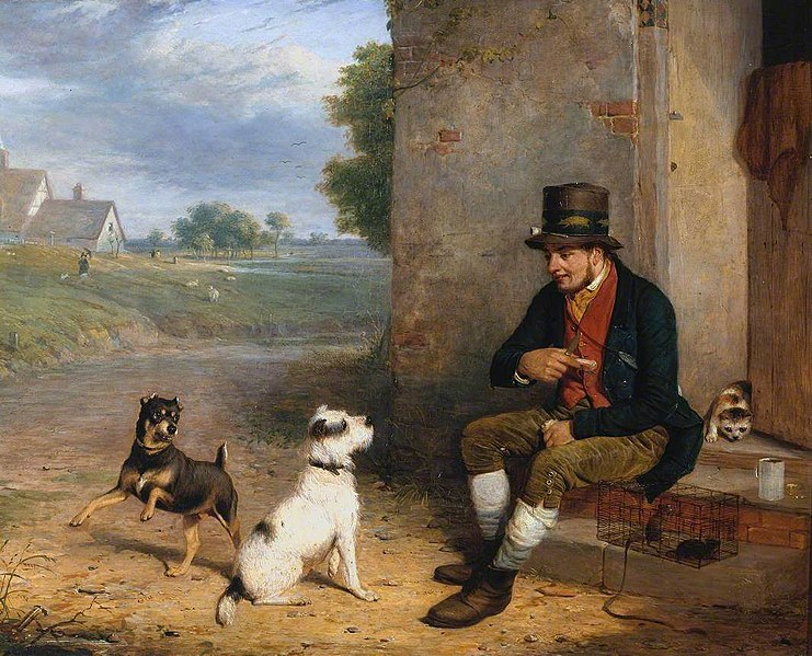 File:Thomas Woodward (1801-1852) - The Rat-Catcher and his Dogs - N01379 - National Gallery.jpg