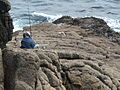 "Three ""hopeful fishermen"" on Minack Point. - geograph.org.uk - 95560.jpg"