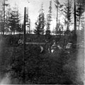 Three men standing by logs, Puget Sound Navy Yard, approximately 1897 (INDOCC 1751).jpg