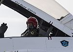 Thunderbirds fly Buzz Aldrin 170402-F-TT327-290.jpg
