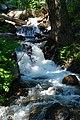 Tierra Creek.jpg
