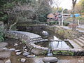 Todoroki Springs.JPG