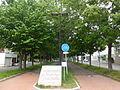 Tonden Mizuho-dori Avenue.JPG