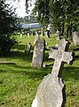 Torquay cemetery - geograph.org.uk - 257328.jpg