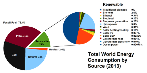 Total World Energy Consumption by Source 2013